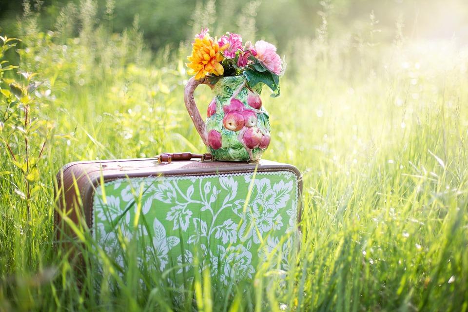 summer-still-life-785231_960_720