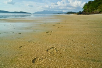 beach-2297883_960_720